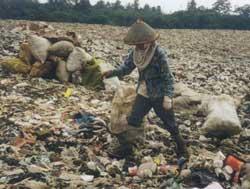 sampah1.jpg